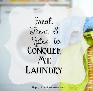 Break These 3 Rules to Conquer Mt Laundry