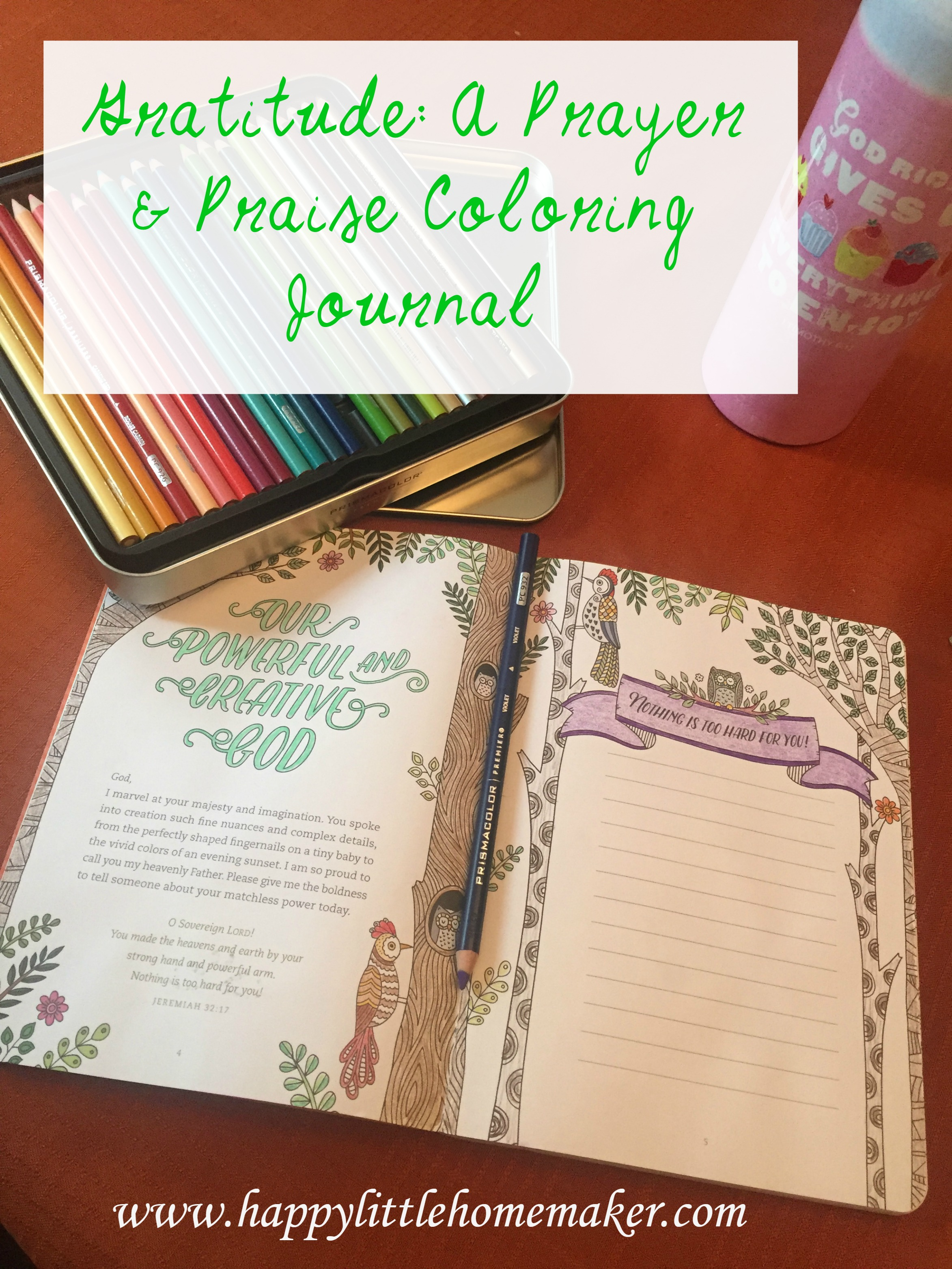 Gratitude a prayer and praise coloring journal book review gratitude a prayer and praise coloring journal book review happy little homemaker solutioingenieria Gallery