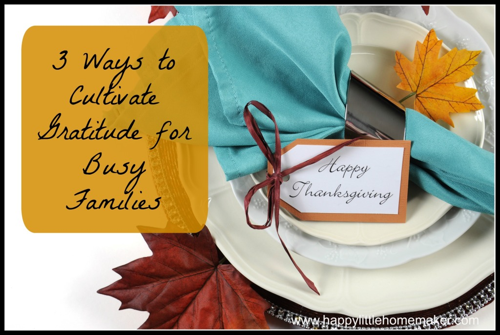 3 Ways to Cultivate Gratitude for Busy Families