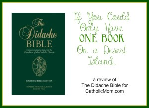 didache bible review