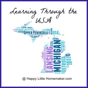 learning through the usa michigan