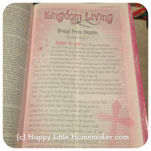 god's little princess holy bible inside feature