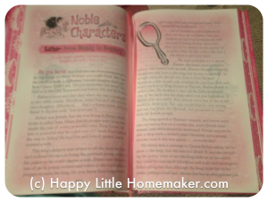 god's little princess holy bible inside bible study