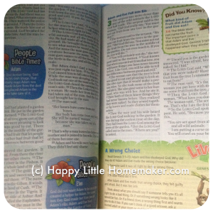 nirv-adventure-bible-early-reader-inside