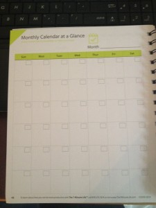 7-minute-life-planner-review-month-view