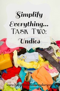 simplify everything 02 undies