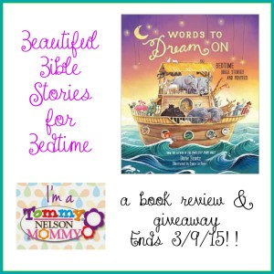 words to dream on review giveaway