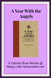 year-with-angels-catholic-book-review